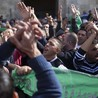 Free Palestine, Free Gaza