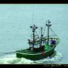 Le journal d'infos sur la pêche
