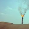 Environmental problems&Law