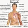 World Stem Cells, World Stem Cells Clinic, Stem Cell Treatments & Stem Cell Therapy