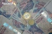 DEVALUATION DU FRANC CFA ANNONCEE SUITE A LA CRISE DE L'EURO : L'Idep repose le débat | fin de l'euro et économie | Scoop.it