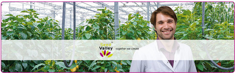 Seed Valley | Together we create | Vacatures | Floriade 2022 | Scoop.it