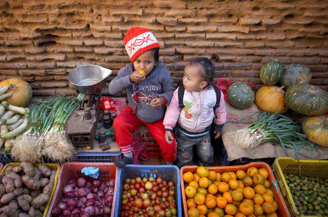 Malnutrition and Obesity Coexist in Many Countries, GNR 2016 Report Finds | IFPRI Research | Scoop.it