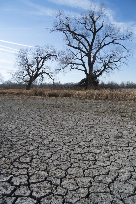 2013: A Tipping Year For Climate Change? : NPR | Local Economy in Action | Scoop.it