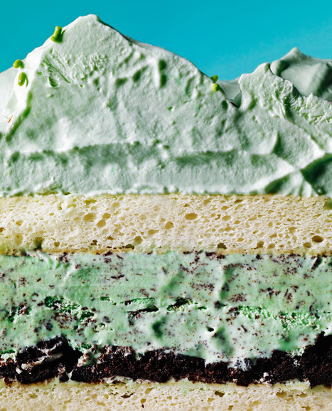 Mint Chip Ice Cream Cake. #Food #Recipe   The Man With The Golden Tongs Hands Are In The Oven   Scoop.it