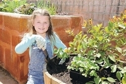Community has hunger for garden - inMyCommunity - Perth, Western Australia   edible landscaping   Scoop.it