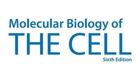 Molecular Biology Of The Cell 6th Edition Pdf A