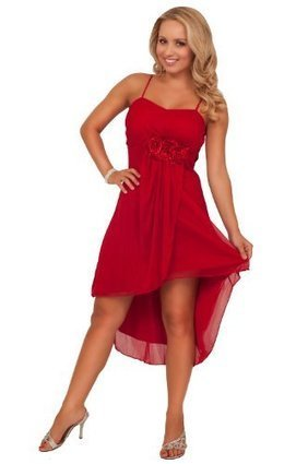 a6febffd0e1 High Low Hem Knee Length Sweet Homecoming Special Occasion Empire Waist  Dress