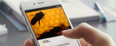 Facebook is opening up Instant Articles to newsrooms everywhere. Will a flood of distributed content follow?   New media environment   Scoop.it