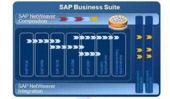 Reportaje Sobre Someter a prueba  In-Memory (SAP HANA) | Social Media | Scoop.it