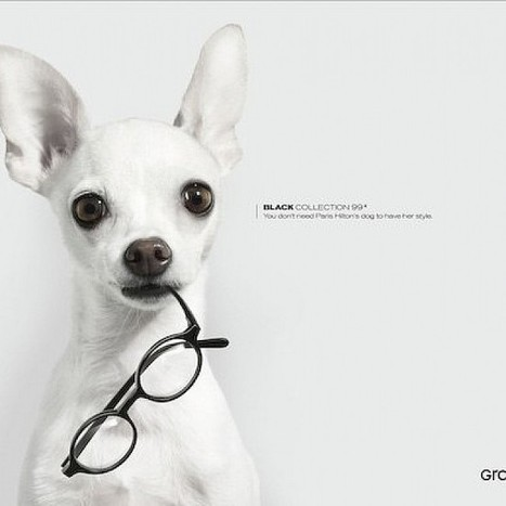 Grand Optical Print | ADMAREEQ - Quality Marketing and Advertising Campaigns Blog | Marketing&Advertising | Scoop.it
