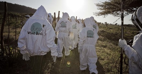 Bees Without Borders Is Spreading The Gospel Of Beekeeping Around The World | Colony Collapse Disorder | Scoop.it