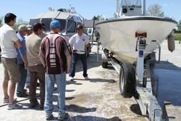 UTAH: Park rangers take over hunt for quagga, zebra mussels | State parks | Scoop.it