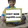 MGT 490 ASH Course Tutorial(mgt490.com)