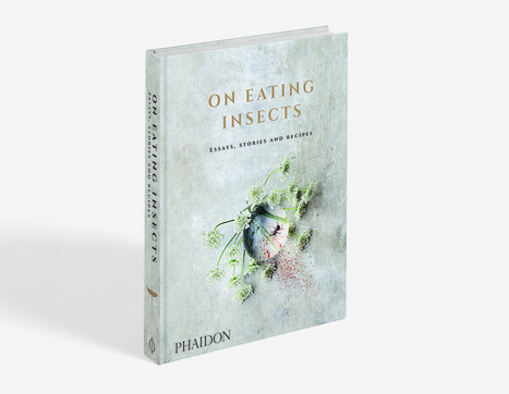 On Eating Insects – Essays, stories and recipes | Entomophagy: Edible Insects and the Future of Food | Scoop.it