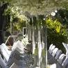 The Best Ways To Celebrate Wedding In Port Douglas