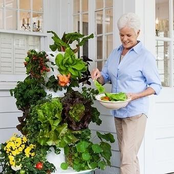 Grow Vegetables, Fruits & Herbs | Aeroponic Tower Garden Vertical Garden | Healthy Living Lifestyle | Scoop.it