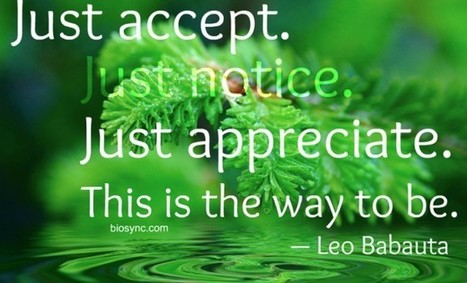 Way to Be: Acceptance and Appreciation – BioSync Research Institute | Mindfulness and Meditation | Scoop.it