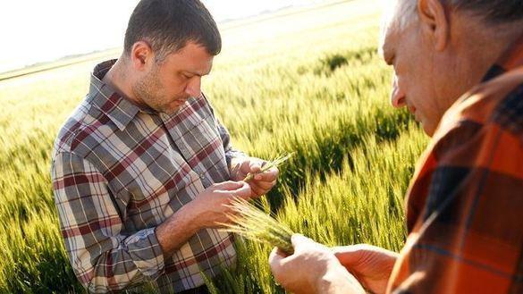 Formations à l'agro-écologie proposées par Ver de Terre Production