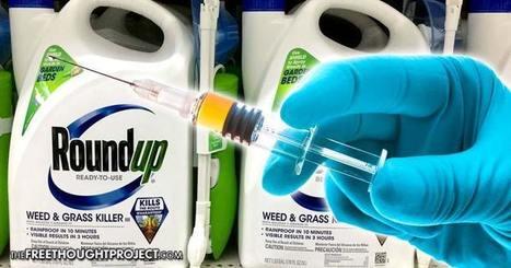 Du Glyphosate de Monsanto dans les vaccins pour enfants | Actu Santé et alternatives | Scoop.it