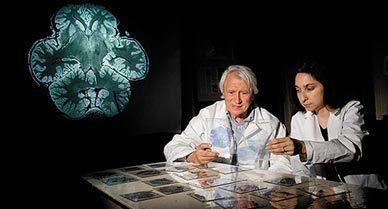 Brain Cells for Socializing | Animals in captivity - Zoo, circus, marine park, etc.. | Scoop.it