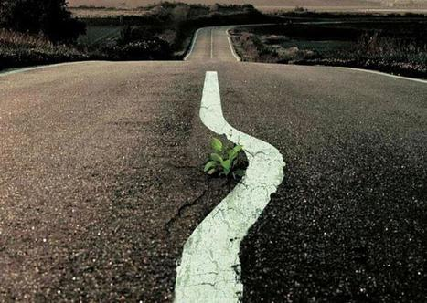 The Earth Charter / facebook | #Road to Dignity | Scoop.it