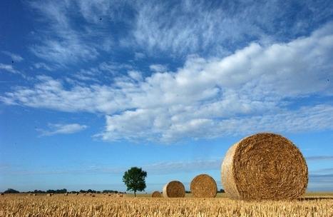 Ces hectares de terres agricoles mangés par le béton - LExpansion.com   Intervalles   Scoop.it