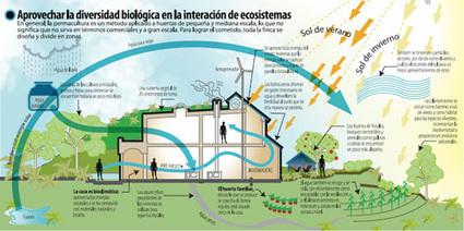 1000 libros sobre ecología, permacultura, agroecología, bioconstrucción y vida sustentable | Arte y Cultura en circulación | Scoop.it