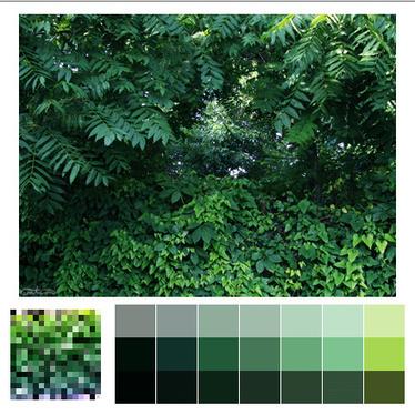 Descubre las paletas de color más exquisitas de la naturaleza | The Creators Project | Arte y Cultura en circulación | Scoop.it