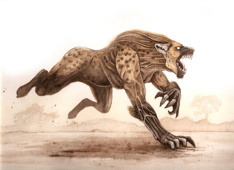 Werehyena   They were here and might return   Scoop.it