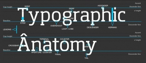 Typography: what you should know to be a better designer   Usability and UX   Scoop.it
