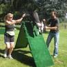 Agility Dog Training