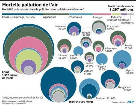 La pollution tue plus que le sida et le paludisme réunis   APMP NEWS   Scoop.it