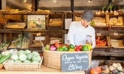 China's middle class turns to organics after food safety scares | Base of the Pyramid (BoP) Markets, Marketing at the BoP & Inclusive Business | Scoop.it