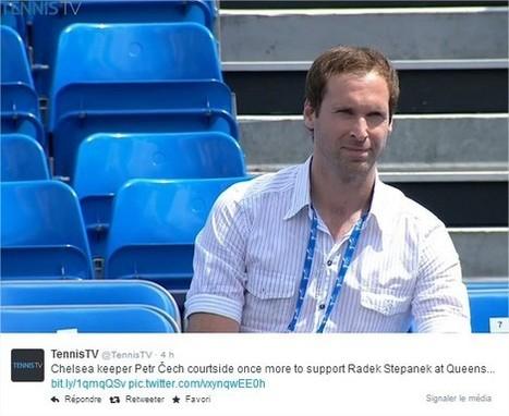 Petr Cech soutient Stepanek | Tennis , actualites et buzz avec fasto-sport.com | Scoop.it