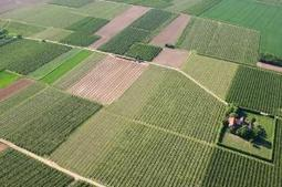 EU farm policy 2014-2020: MEPs approve new CAP regulations and transition measures   Reforming Europe's Common Agricultural Policy   Scoop.it