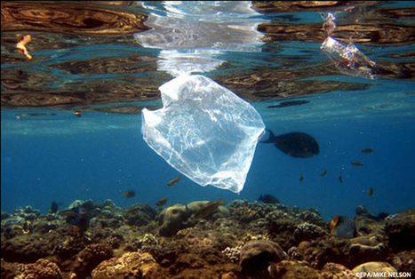 """5 Myths (and Truths) About Plastic Pollution in Our Ocean (""""all solutions needed; no single approach"""") 