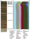 Phylogenetic stratigraphy in the Guerrero Negro hypersaline microbial mat | Next Gen Sequencing (NGS) and Bioinformatics at UVic | Scoop.it