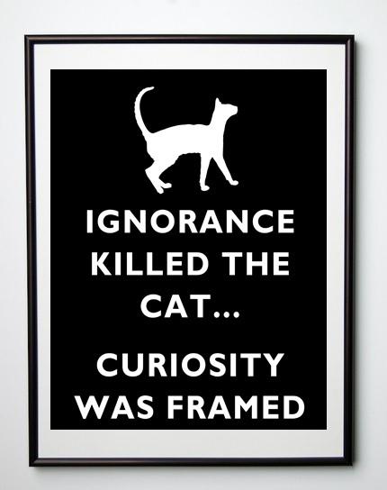 Hey Leaders: Curiosity Did Not Kill TheCat | Leadership Online | Scoop.it