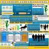 USAA Credit Monitoring Program