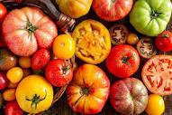 Agriculture : une innovation pour redonner du goût aux tomates