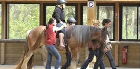 Handicap : Equiphoria se met dans les pas du cheval thérapeute | Brèves de l'actu - Lozère - SO | Scoop.it