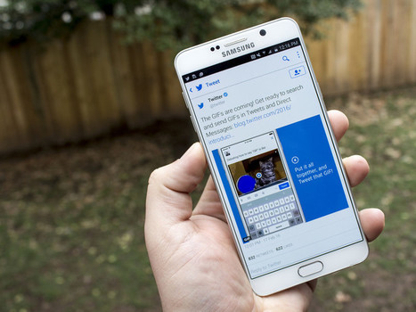 Twitter is adding a dedicated GIF button with searches powered by Giphy and Riffsy   Social Media Power   Scoop.it