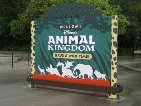 Seeking Adventure? Rediscovering Disney's Animal Kingdom Park | Amusement Parks | Scoop.it