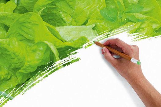 La stratégie wallonne pour réinventer notre alimentation