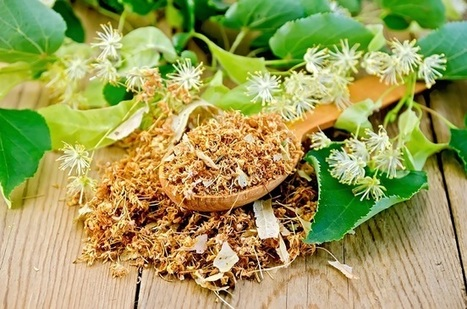 Best Herbal Steams for Cold and Flu Relief This Season   Organic Farming   Scoop.it