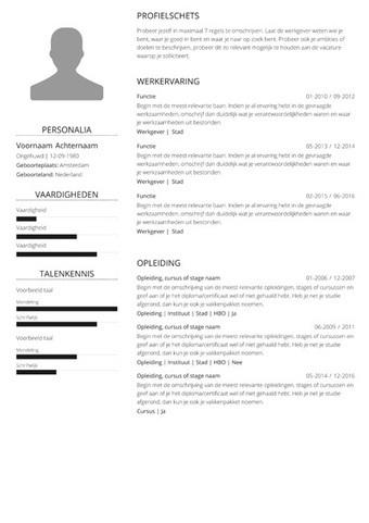 voorbeeld cv it consultant CV voorbeeld administratief medewerker | CV5 |