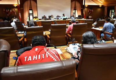 TAHITI / Insertion sociale par l'activité économique: le point de vue du Cesec