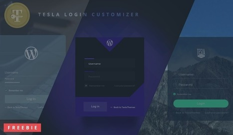 WordPress Plugin Freebie: Tesla Login Customizer | Freakinthecage Webdesign Lesetips | Scoop.it