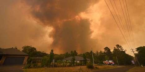 En Martinique Macron Qualifie La Pollution Au